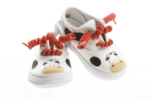 cow-shoes